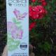 Дневной лифтинг-крем для лица Anti-age омолаживающий от Baikal Herbals