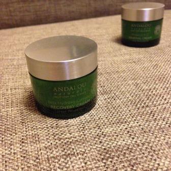 Ночной крем для лица Beta Hydroxy Complex Recovery Cream от Andalou Naturals фото 1