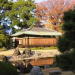 Япония (часть 2)