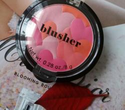 """Румяна Blasher """"Rouge"""" от H&M"""