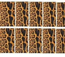 Наклейки PhotoNailArt для фотодизайна ногтей от Черная пантера
