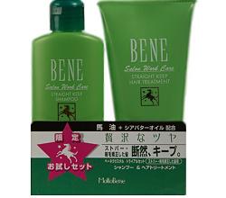 Серия для восстановления и ухода за мелированными и блондированными волосами Bene Salon Work Care SK от Moltobene