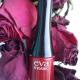Лак для ногтей Fashion color (оттенок № 281) от Eva Mosaic