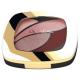 Тени для век Color Riche Quadro (оттенок № Е6 Розовые балетки) от L'Oreal
