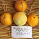 Бурлящий шар ручной работы «Лимонная свежесть» от Мыловаров
