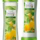 Шампунь и кондиционер для жирных волос «Крапива и лимон» от Oriflame